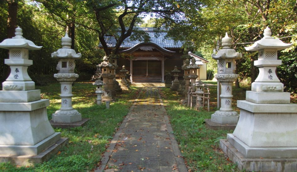 春日神社とタブの木