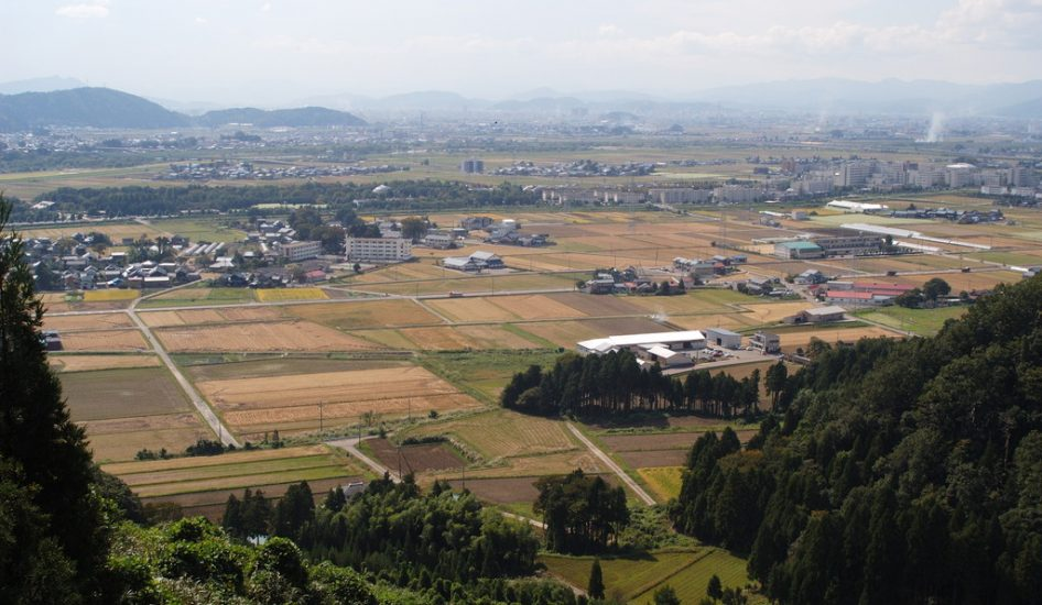 丸岡町上久米田(坂井市)